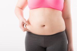 ファンケル カロリミットと内脂サポートどっちがいい?痩せる?