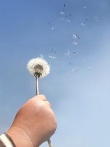 空の巣症候群でつらい毎日から、早や2年。私が克服した方法は3つ