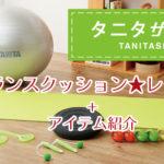 タニタ バランスクッション TS-959の口コミは効果なし?レビューします!